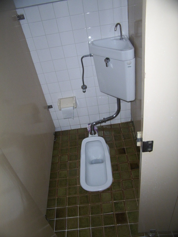 Japanese style squat toilet.