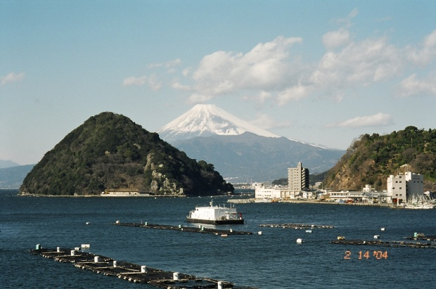 Mt. Fuji from Izu Mito Sea Paradise