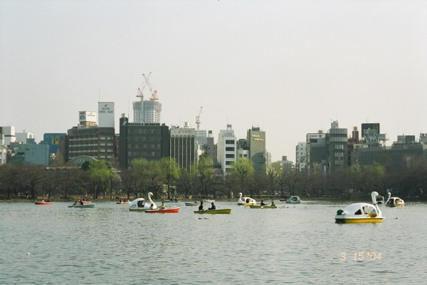 Rental boats at the Ueno park duck pond