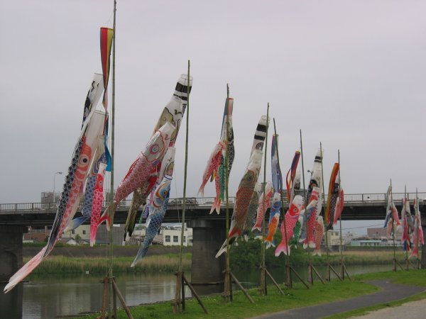 Carp banners along the Kano river in Numazu