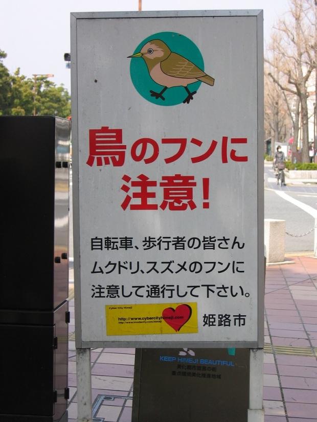 """""""Beware of bird poop"""""""